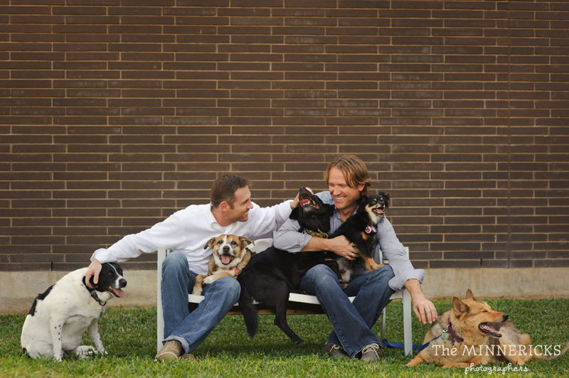 dog family photo session auctioned for Real Men Care event by MAC and DAA (1)